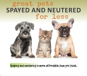 low cost spay neuter myths