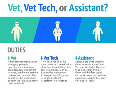 Vet and Vet Tech Infographic