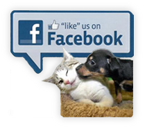 Sterling Shelter Animal Clinic Facebook