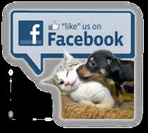 Sterling Shelter Animal Clinic Facebook
